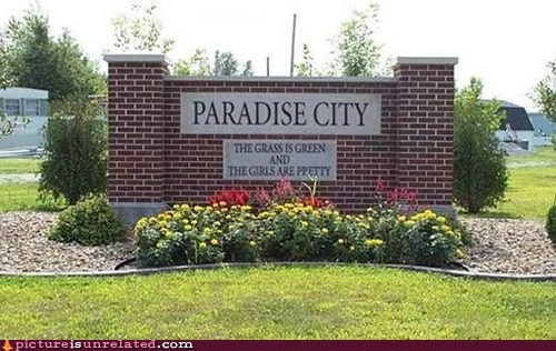 best of week guns and roses paradise city sign wtf - 6159952128