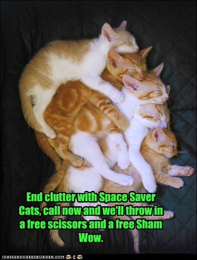 buy Cats sell space TV - 6160540416
