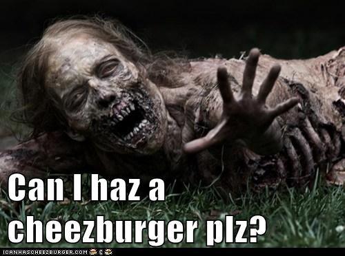 Cheezburger Image 6160883712