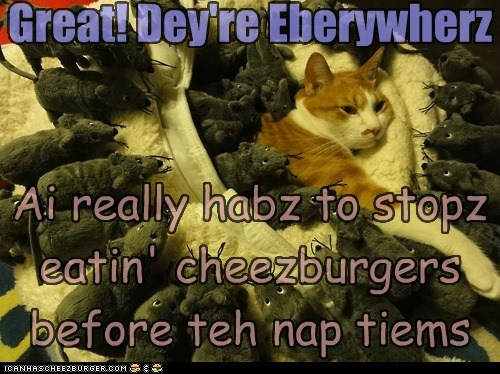 Cheezburger Image 6160940800