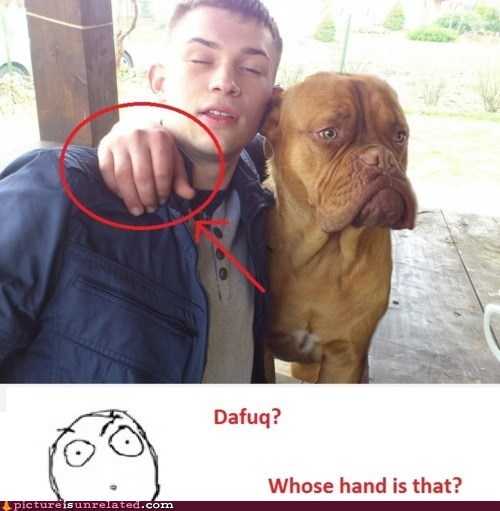 dafuq mans-best-friend wtf - 6161148160