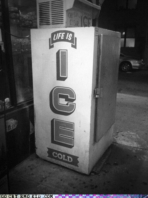 cold,emolulz,ex,ice,life