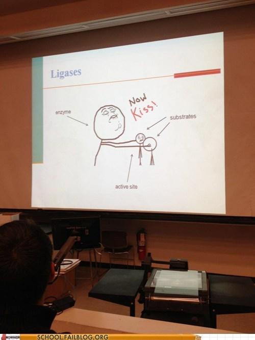 memes in school now kiss pay attention powerpoint - 6161174016