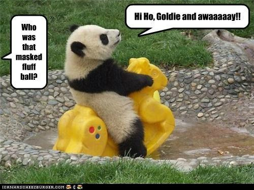 The Lone Panda Rides Again