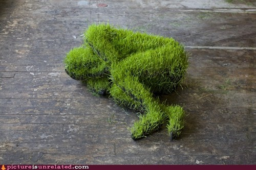 grass man wtf - 6161772544