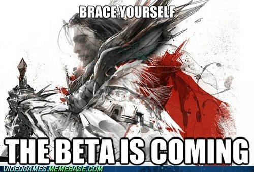 beta brace yourself guild wars 2 meme on purpose - 6162146048