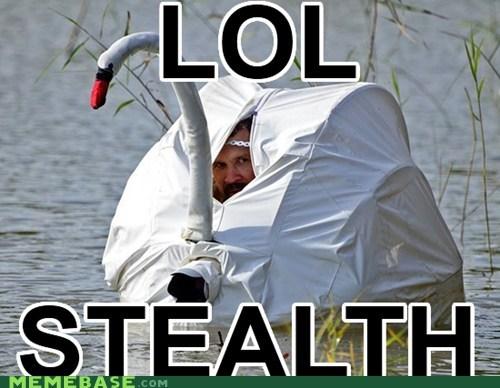 99 level lol Memes stealth swan - 6162281472