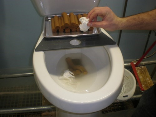 crappy jobs,Photo,toilet testing
