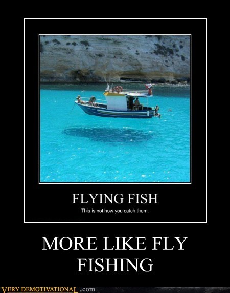 boat fishing fly hilarious wtf