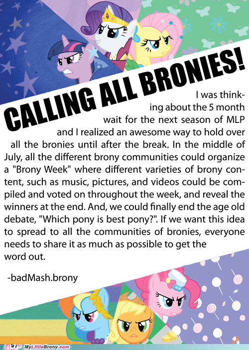 Bronies,brony week,get togethers,IRL,my little pony