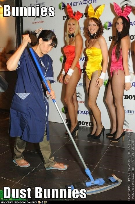 janitors playboy bunnies political pictures - 6163232256