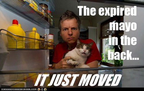 alive ew food fridge gross move refridgerator scary - 6163547136