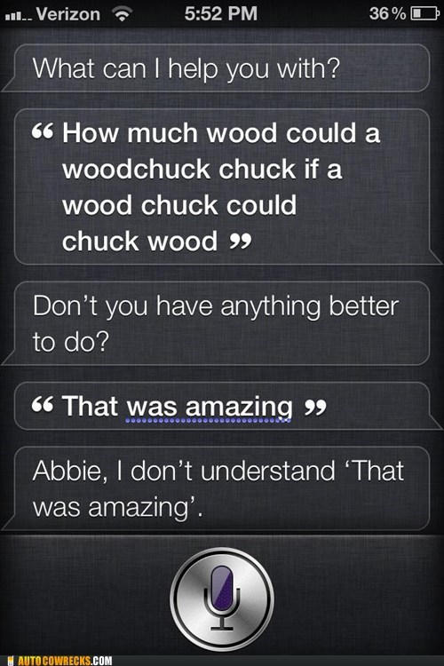 siri that was amazing trolling siri woodchucks - 6163765504