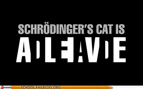 alive dead schrodingers-cat which one - 6164600832