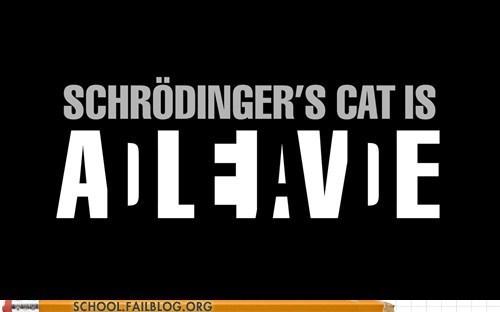 schrodingers-cat - 6164600832