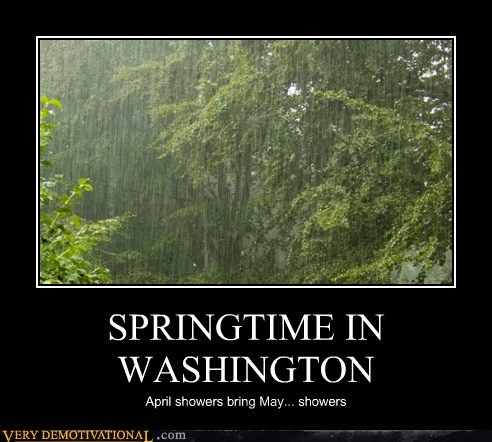 SPRINGTIME IN WASHINGTON April showers bring May... showers