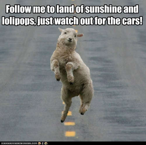 best of the week cars dancing follow me Hall of Fame happy lolipops road sheep sunshine whimsical