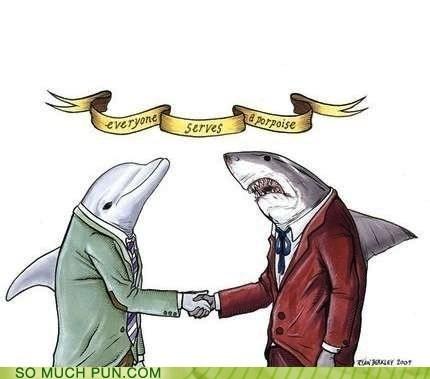 double meaning literalism porpoise purpose shark similar sounding - 6165581312