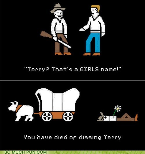 cause of death classic died dysentery female name oregon trail terry video game - 6165661184