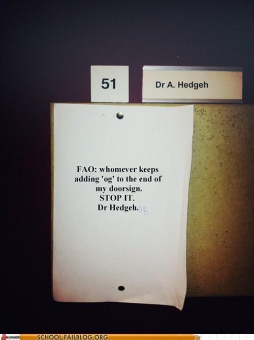 dr-hedgeh hedgehog troll students - 6165696256