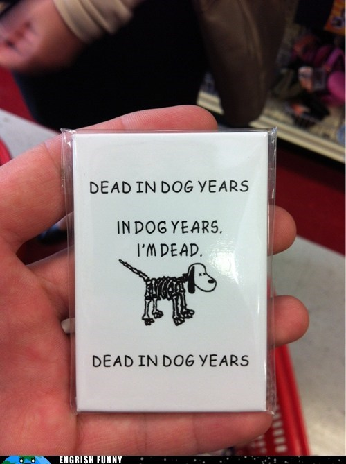 dead dog,dead in dog years,dog years,picture