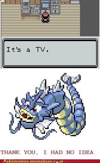 gameplay gyarados meme Memes TV you dont say - 6166016000