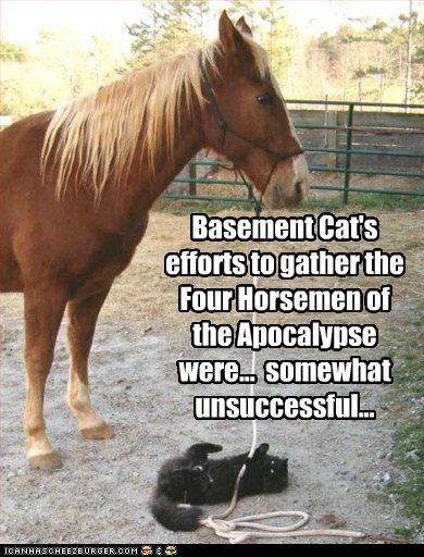 apocalypse,basement cat,cat,Cats,effort,FAIL,four horsemen of the apocalypse,horse,Interspecies Love,ropes,unsuccessful