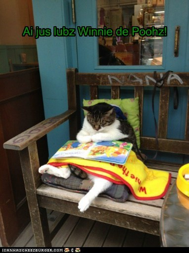Cheezburger Image 6166865408