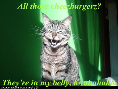 Cheezburger Image 6169093120
