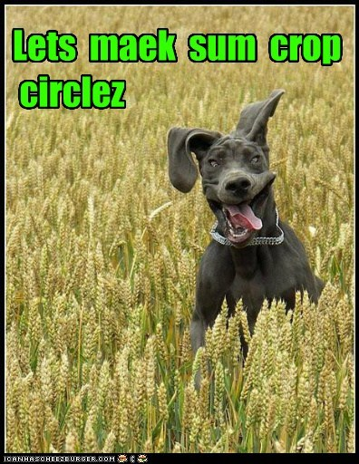 Aliens,crop circles,derp,googie