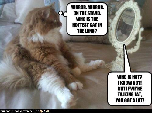 fat insult magic mirror - 6169836032