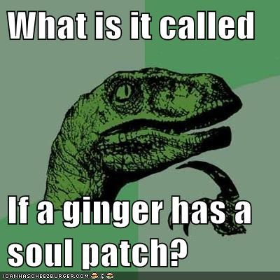ginger soul patch philosoraptor - 6170928128