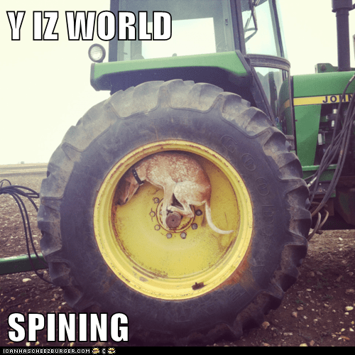 dizzy,dogs,spinning,tractor,tractors,what are you doing,what breed,why