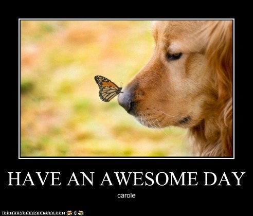HAVE AN AWESOME DAY carole