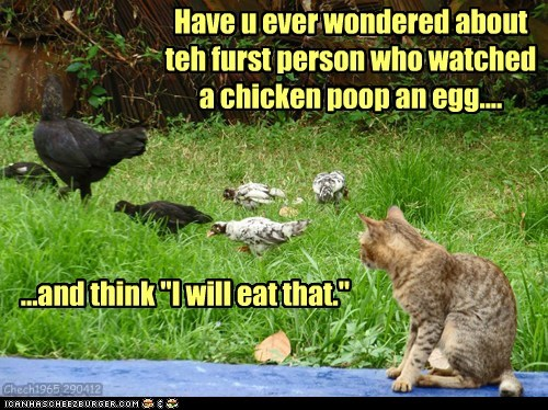 "Have u ever wondered about teh furst person who watched a chicken poop an egg.... ...and think ""I will eat that."" Chech1965 290412"