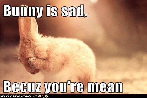 bunny-is-sad-becuz-youre-mean