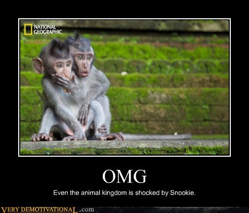 bizarre hilarious monkey national geographic Snookie