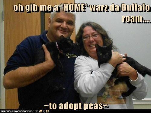 oh gib me a *HOME* warz da Buffalo roam....  ~to adopt peas~