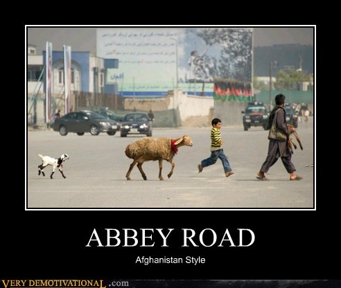 abbey road afghanistan hilarious road style - 6172531968