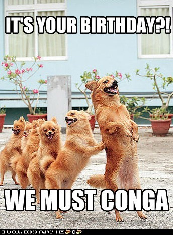 IT'S YOUR BIRTHDAY?! WE MUST CONGA