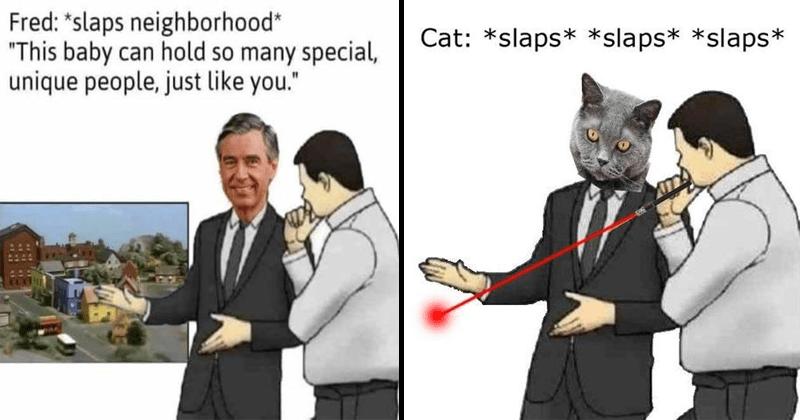 Funny slaps roof of car memes