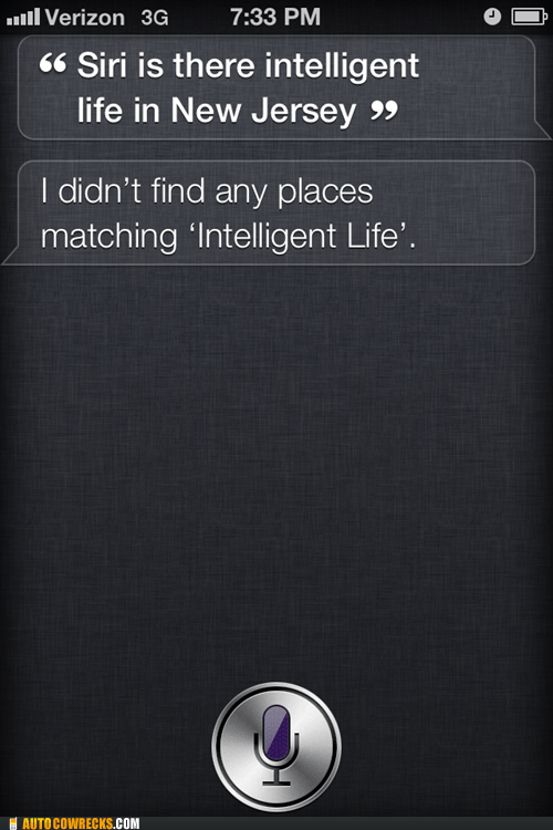 intelligent life,jersey shore,New Jersey,siri