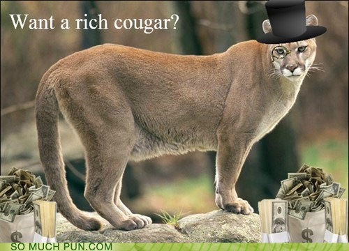 Ad,cougar,double meaning,Hall of Fame,literalism,rich