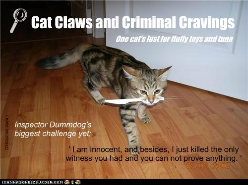' I am innocent, and besides, I just killed the only witness you had and you can not prove anything. ' Inspector Dummdog's biggest challenge yet; Cat Claws and Criminal Cravings L ICHC0023001000901 One cat's lust for fluffy toys and tuna