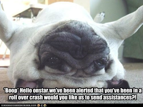crash,dogs,onstar,pug,rollover