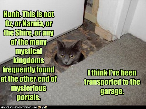 Cats fantasy garage garages kingdom literature lolcats magic narnia oops oz Portal portals shire transport Travel universes