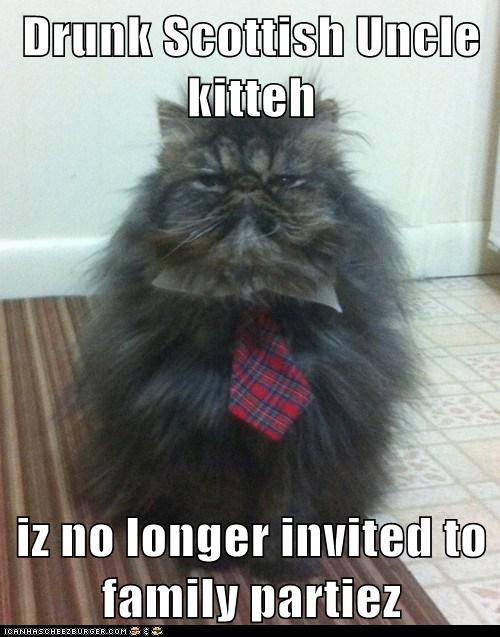 Drunk Scottish Uncle kitteh iz no longer invited to family partiez