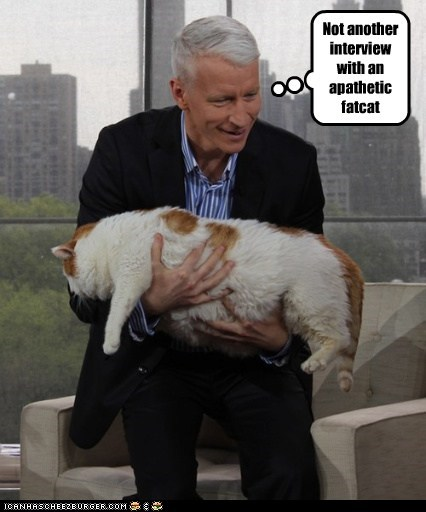 Anderson Cooper Cats political pictures - 6177040128