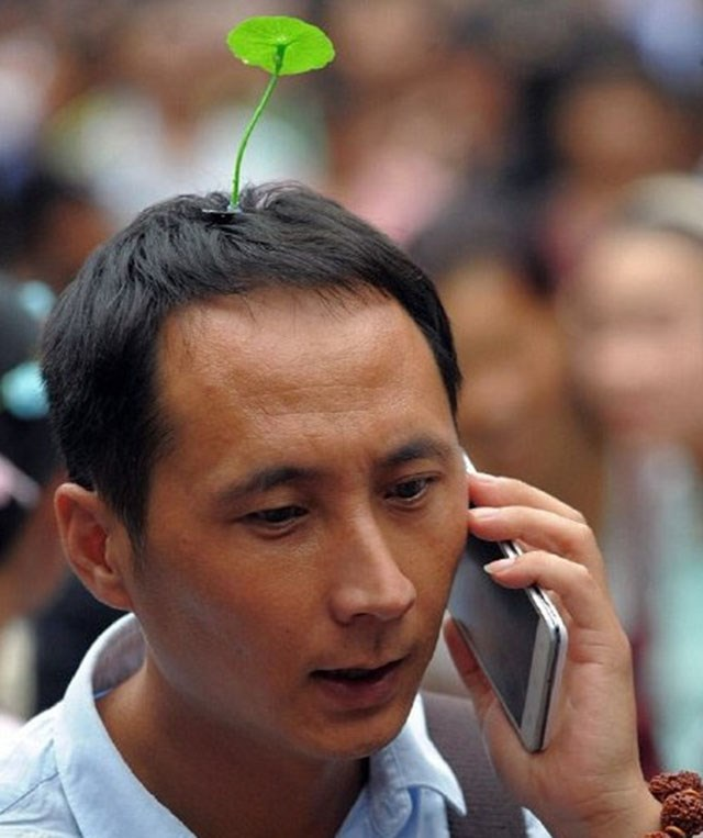 hair,fashion,head,pikmin,sprout,trend,chinese