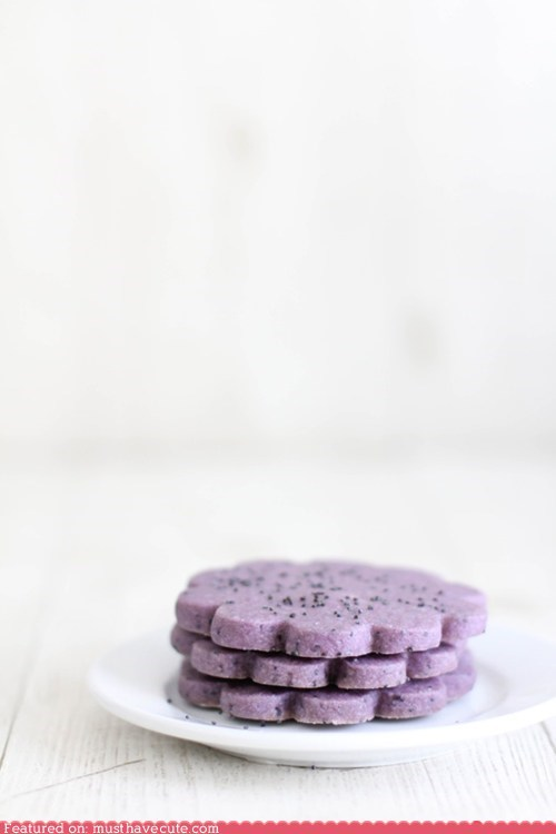 cookies epicute Flower hibiscus purple - 6177356800
